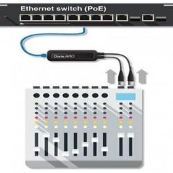 Adaptor audio Dante AVIO 2 canale intrare analog